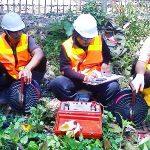 Mengenal Jasa Geolistrik Surabaya Terbaik